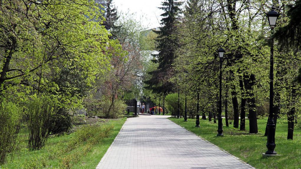 Евгений Куйвашев поручил реконструировать парки в Екатеринбурге и заменить тополя другими деревьями